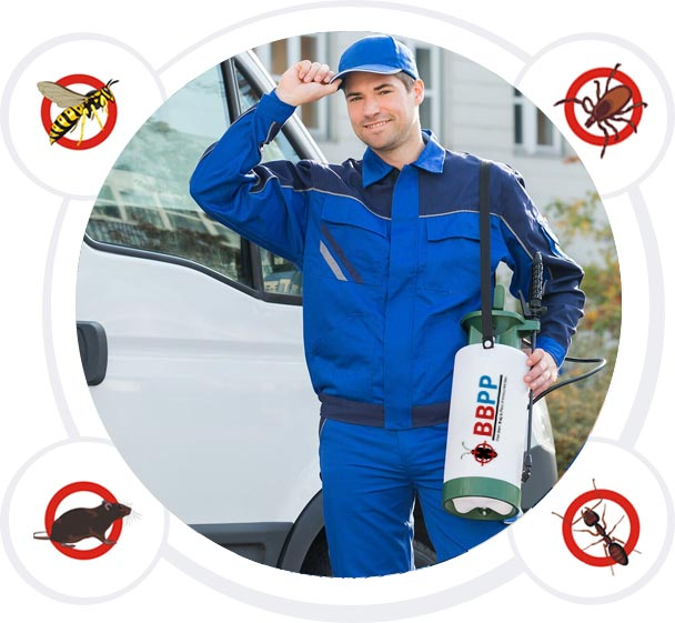 Get rid of your pests - BBPP Your Local Pest Controllers in Vaughan